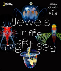 Jewels in the night sea