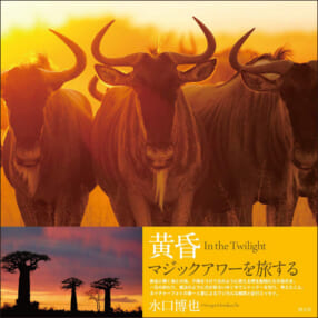 水口博也『黄昏 In the Twilight』